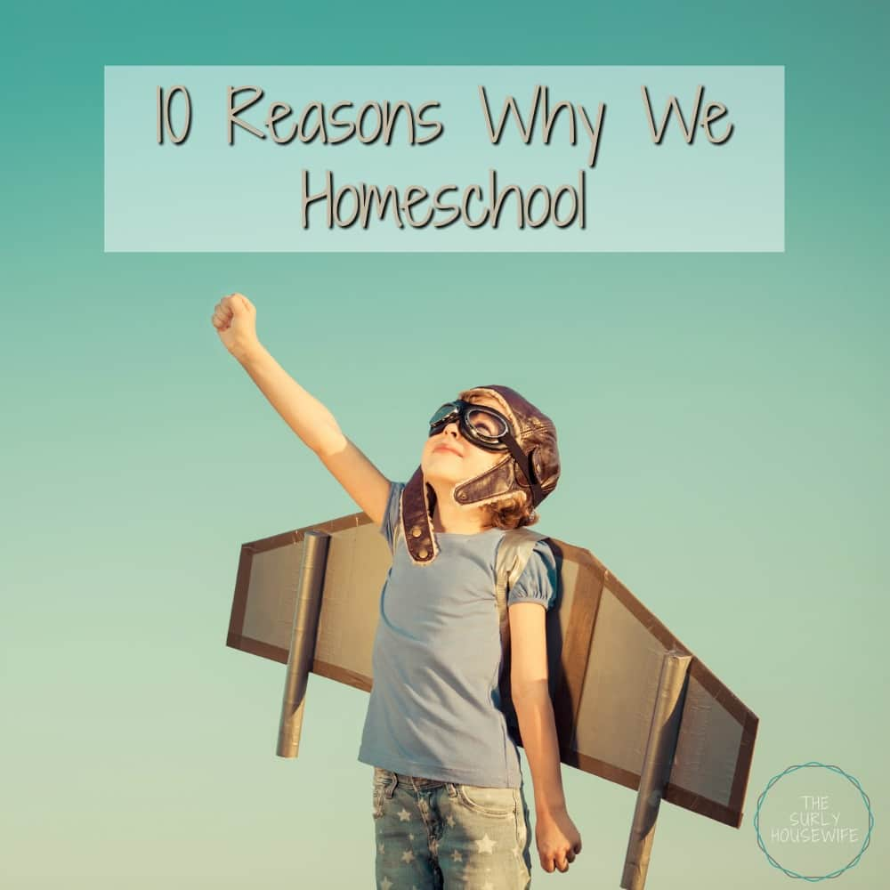 Why homeschool? 10 reasons why we decided to homeschool our kids. Check out this post to learn our motives for starting a secular homeschool.