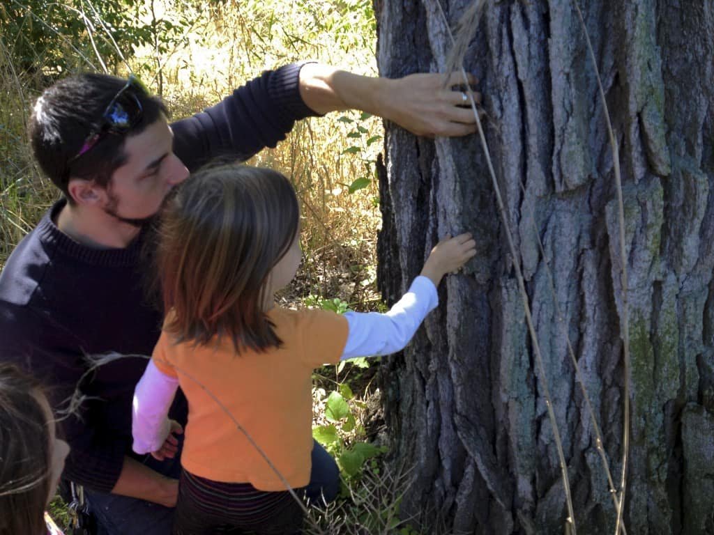 father and daughter examine bark of an oak tree