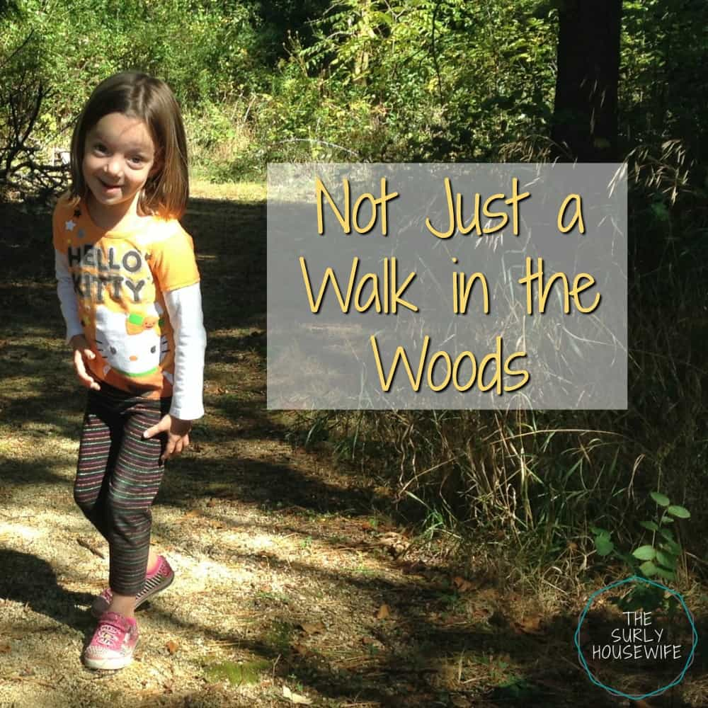 Going on a nature walk with kids is so much more than a walk in the woods. They are a life skill kids need to know, and it teach kids about self-reliance.