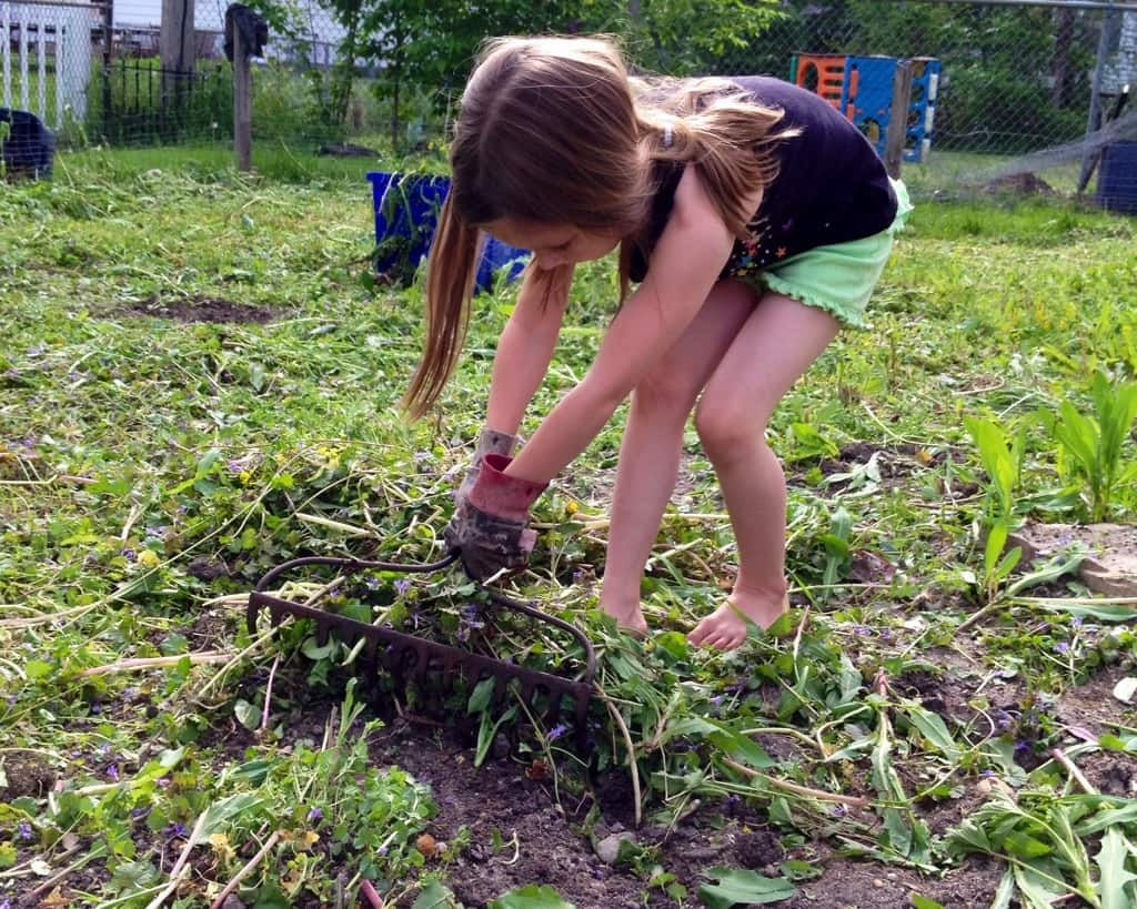 young girl weeding the garden