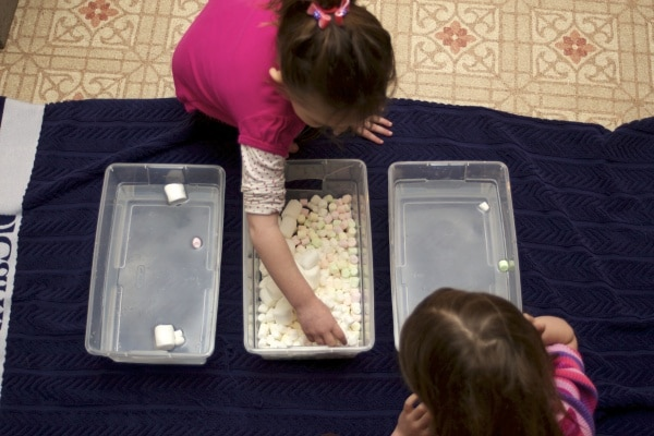 marshmallow sensory play with water