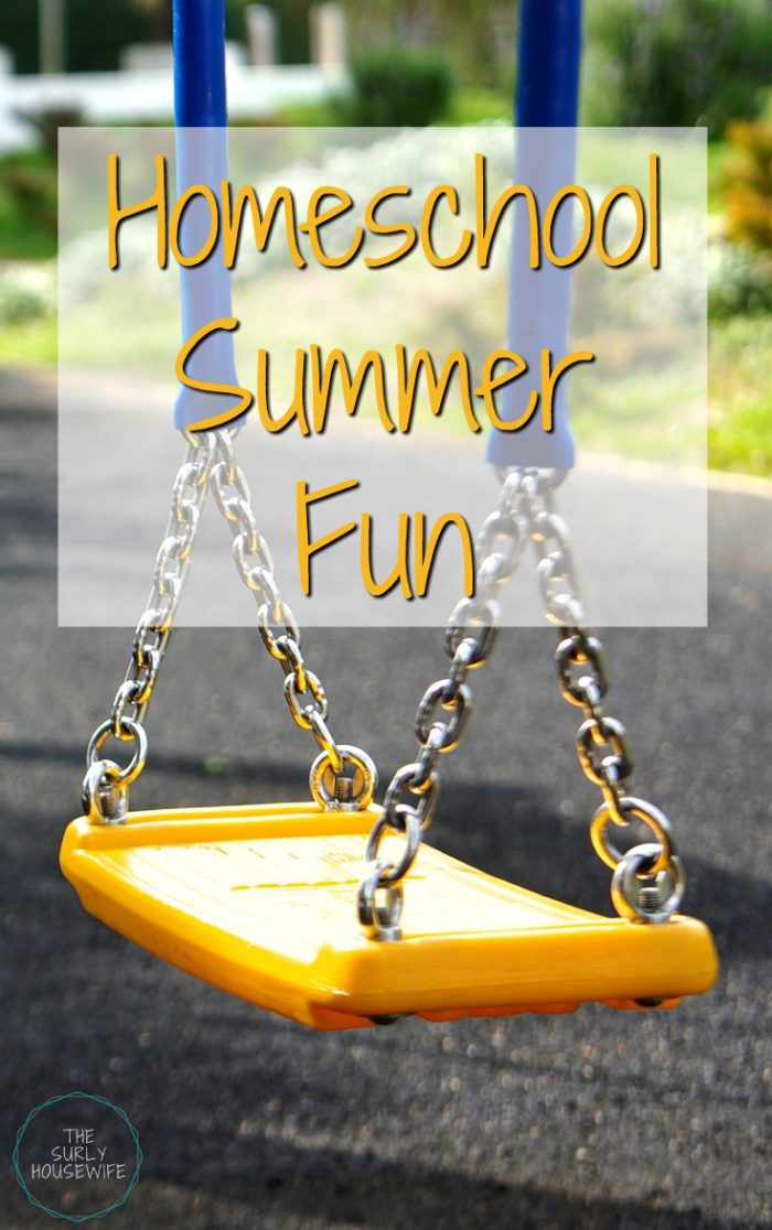 Looking for something to do this summer in WI? Check out some of our favorite parks in southern Wisconsin that we have explored with our homeschool group.