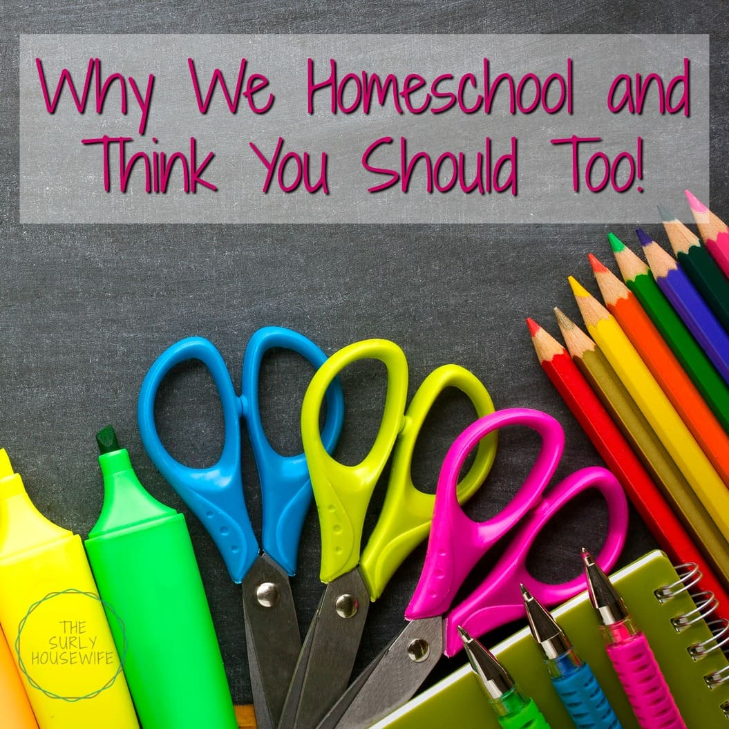why we homeschool