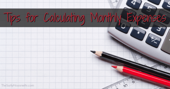 Tracking Monthly Expenses