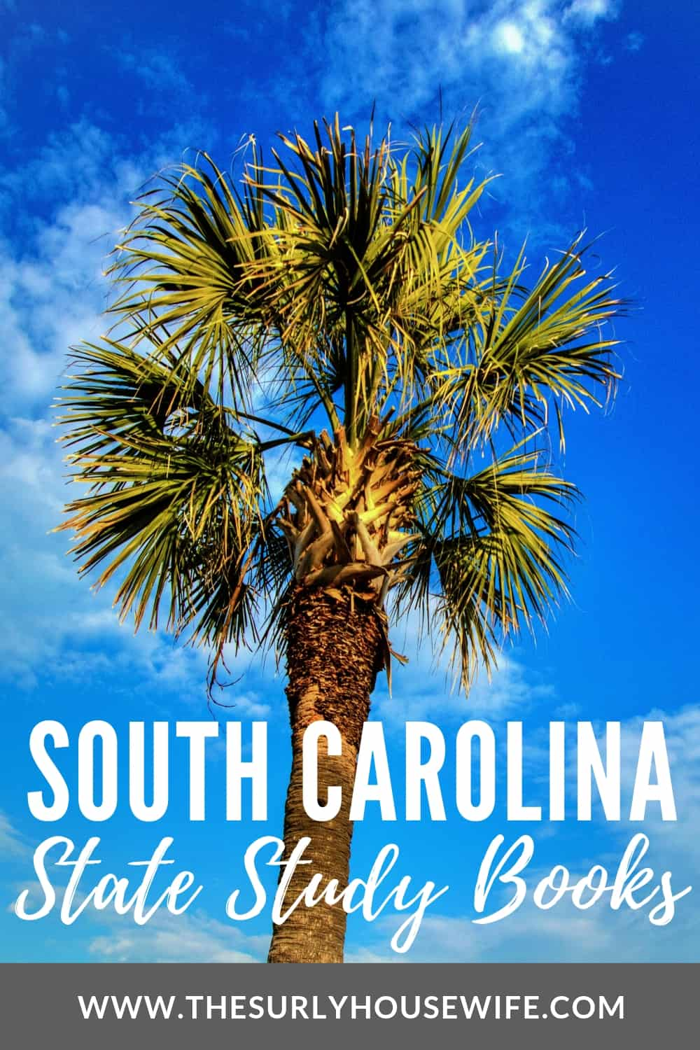 Need children's books about South Carolina? This book list includes picture books about South Carolina history and chapter books set in South Carolina.