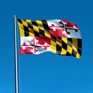 Flag of Maryland waving on flag pole