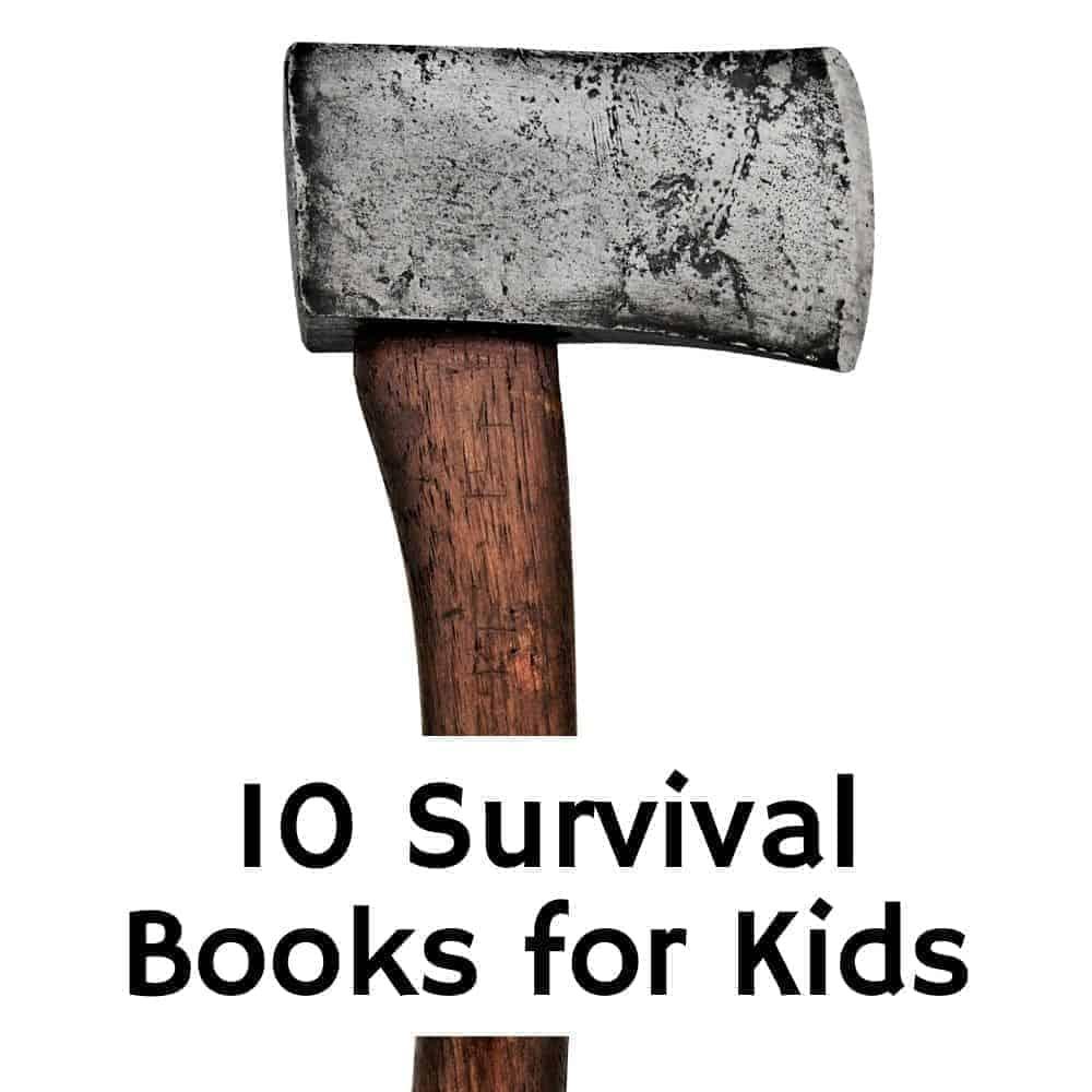 Hatchet on a plain white background. Title image for blog post: 10 Survival Books like Hatchet for kids