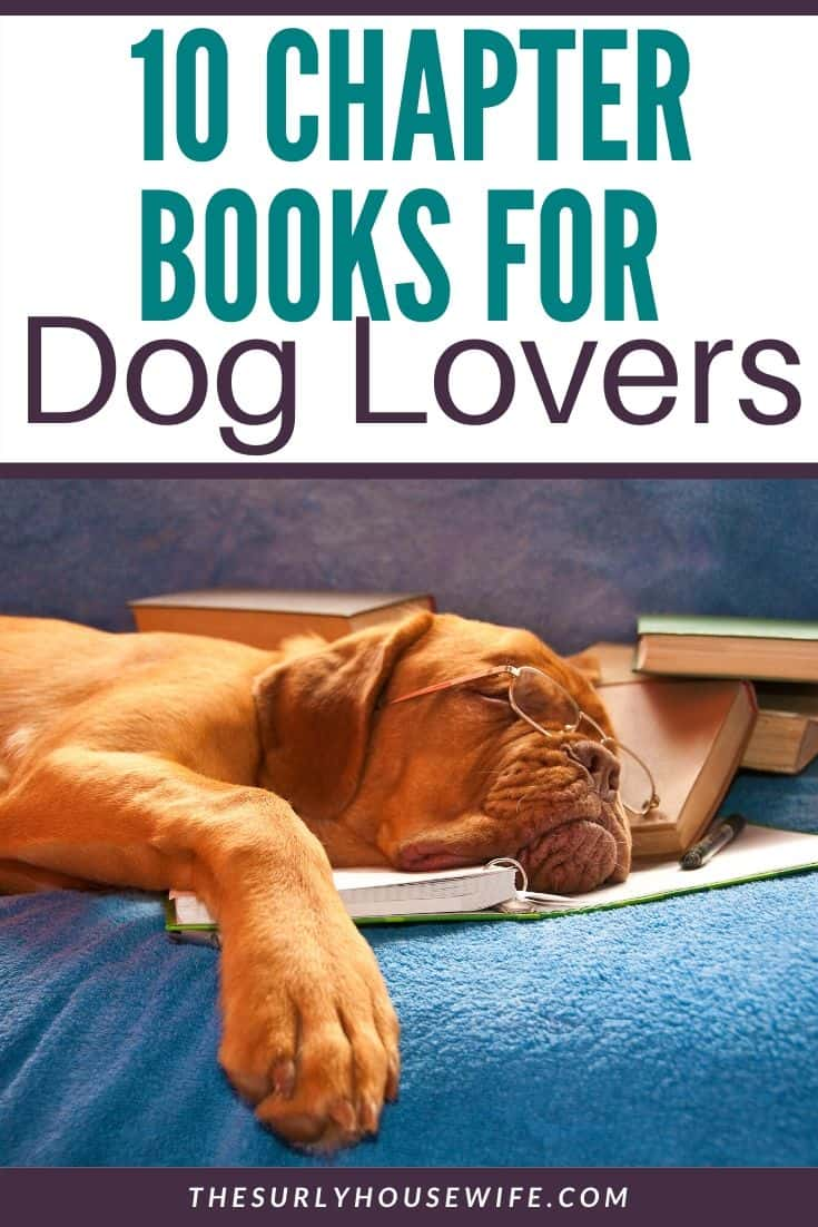 Does your child need help finding their next book? Is your child an animal lover? Then don't miss this post for 10 of the best chapter books about dogs!