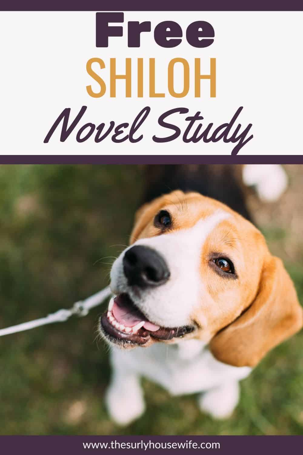Looking for a reading guide about the book Shiloh? Searching for lesson plans or activities about Shiloh? Check out this post for discussion questions as well as why Shiloh is the perfect book for a unit study!
